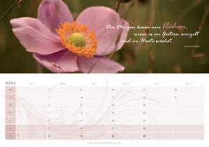 kalender 2009 4
